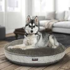 Kirkland Signature Dog Beds