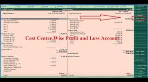 P And L Format Tally Tdl For Cost Center Wise Profit And Loss Account Tally Add On For Cost Center Wise P L