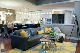 gray sofa living room ideas charcoal grey couch decorating dark gray sofa living room ideas gray
