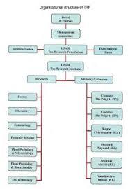 Draft Organization Structure Chart Of Bpo Industry