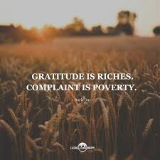 Quotes On Gratitude Mesmerizing 48 Of The Best Gratitude Quotes And Sayings To Make You More