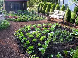 Kitchen Garden Layout Garden Design Garden Design With Vegetable Garden Layout Ideas