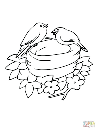 Bluebird Coloring Page Samantha Bell Printable Educations Pages