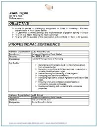 Over 10000 CV and Resume Samples with Free Download: 2 years experience  resume format