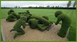 Sculpture végétal  - Page 2 Images?q=tbn:ANd9GcShgux-0tnq5gcgB-twN1TVecyMHC_ydc8t1kbchO9OaTWWi1MU