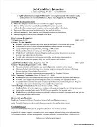 Resume Summary Examples For Customer Service Resume Template For Customer Service Resume Summary Examples 6