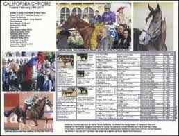2015 Belmont Stakes Chart Details About Race Horse California Chrome Kentucky Derby Preakness Picture Pedigree Chart