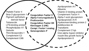 Venn Diagram Mass And Weight Venn Diagram Of Protein Candidates From Mass Spectrometry Analyses