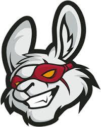 Misfits Gaming - LEC Team