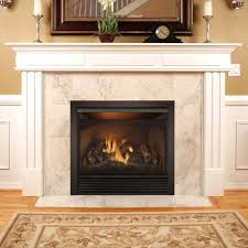 full size dual fuel natural gas propane fireplace insert ventless reviews heaters for vent free