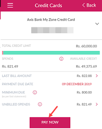 However, to use the facility you need to have sbi debit card. How To Pay Axis Bank Credit Card Bill Online Alldigitaltricks
