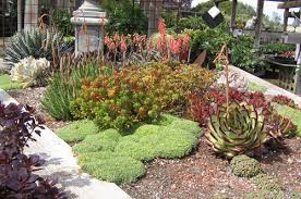 Small Picture Brilliant Different Landscape Designs Desert Rock Garden Design