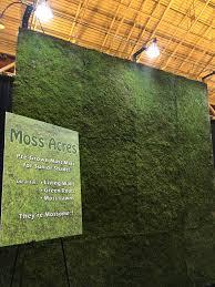 Moss Mats Live Moss Panels For Living Walls Green Walls Green Roofs