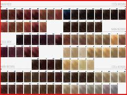 Goldwell Reshade Color Chart Prototypal Goldwell Colour Mousse Colour Chart Goldwell Soft
