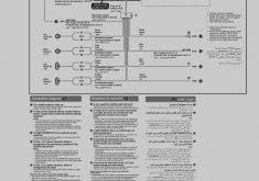 25 elegant wiring diagram sony xplod color code and webtor me for Sony Xplod Car Stereo Wiring Diagram 25 new of wiring diagram sony xplod cdx gt33w gt300