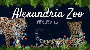 Alexandria Zoo Holiday Lights Holiday Light Safari Commercial 2015