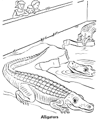 Small Picture Zoo Reptile Coloring Pages Zoo Alligators Exhibit Coloring Page