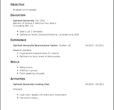 Resume No Working Experience Resume Example No Work Experience Ellseefatih Com