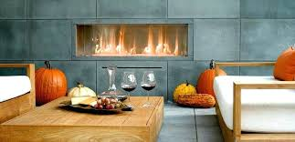 modern gas stoves. Modern Gas Fireplace Inserts Wood Burning Contemporary Stoves For H
