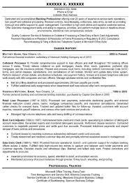 Resume Help Online Resume Help Online Professional Resume Templates resume 1