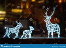 Animals In Christmas Lights Animals Christmas Decorations Stock Image Image Of