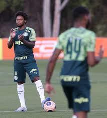 Palmeiras x Santo André: informações, estatísticas e curiosidades –  Palmeiras