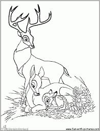 25 Printen Bambi Kleurplaat Mandala Kleurplaat Voor Kinderen