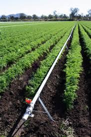 garden irrigation system. Vegetable Garden Watering System Irrigation