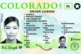 Long Identification Colorado Suggestions amp; Related Keywords Card Tail -