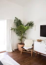 indoor plants, home decor ideas, planters, hanging plants, clean air plants,