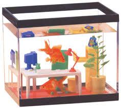 office fish. Office Fish Tank WorkVitamins