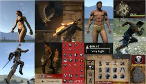 Great mod compilation. No game breaking. at Dragons Dogma Dark.