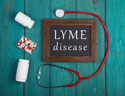 Image result for Lyme Disease istock