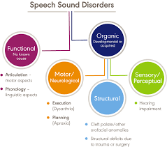 Speech Sound Disorders Articulation And Phonology Overview