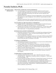 Sample Resume Of A Business Development Consultant Refrence Awesome
