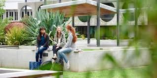 respect now always deakin diversity and inclusion