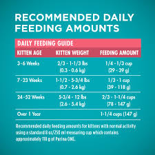 Purina One Healthy Kitten Natural Dry Cat Food 3 5 Lb