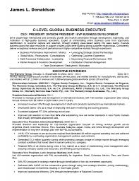 Nice Technology Strategy Consultant Resume Images Resume Ideas