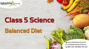 Class 5 Science Balanced Diet Proteins Nutrients Pyramid