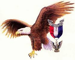 Eagle Party Decorations American Eagle Scout Edible Cake Topper Frosting 1 4 Sheet