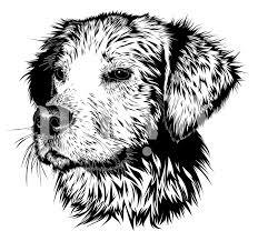 Buy BW Dog wallpaper - Free shipping at ...