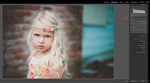 Cropping photography Extreme How To Crop Straighten In Lightroom Photography Life How To Crop Straighten In Lightroom Pretty Presets For Lightroom
