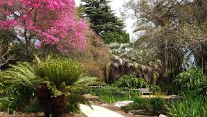 los angeles county arboretum and botanical gardens