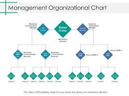 Business Development Manager Organizational Chart Management Organizational Chart Ppt Professional Background