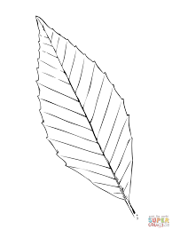 Small Picture Pot leaf coloring page Free Printable Coloring Pages