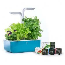 garden smart edition teal blue