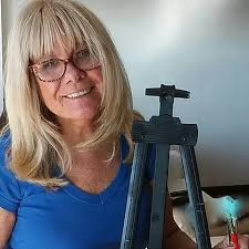 ABOUT Donna Rollins, fine artist and illustrator