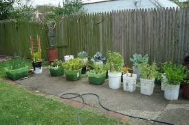 Small Picture Container Vegetable Gardening Designing Your Container Vegetable
