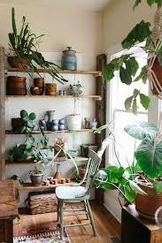 indoor garden design ideas inspire