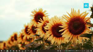 Current Desktop Background Image ...